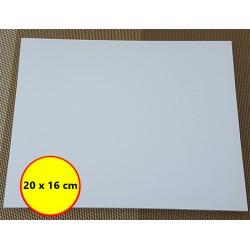 Perspex Board 20 x 16 x 0.5 cm